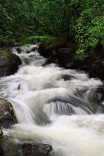Alabama Water...a precious resource