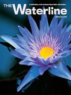 Spring Waterline 2017